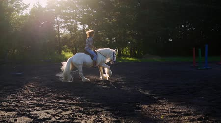 ranč : Young woman riding horse during a summer sunset. Slow Motion