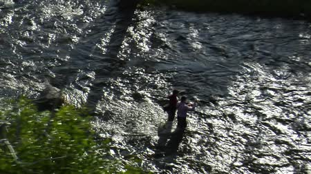 companionship : aerial shot of two fly fisherman Stock Footage