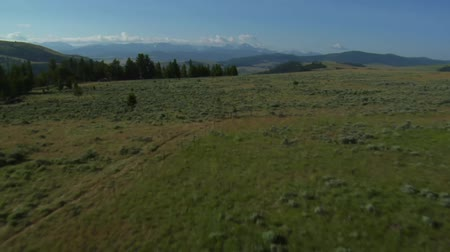 плодородный : aerial shot of sagebrush pastureland with mountains
