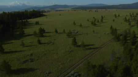 плодородный : aerial shot of open rangeland with forest and mountains Стоковые видеозаписи