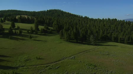 плодородный : aerial shots of meadow and forest