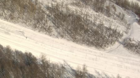 лыжник : aerial shot of skier