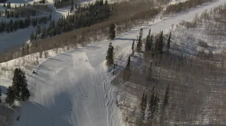 wyscigi : aerial shot of skier and snowboarder with forest