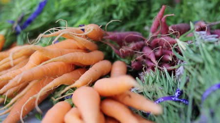 agricultores : beauty shot of  fresh carrots and herbs Stock Footage