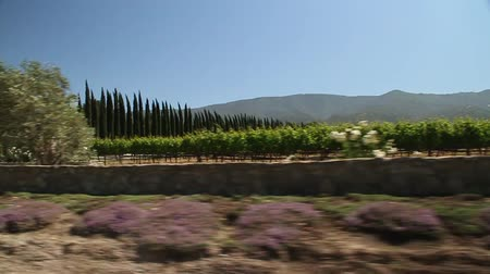 элита : driving through California wine country with gate to estate Стоковые видеозаписи