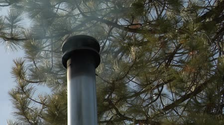 дымоход : Smoking chimney on roof with pine trees