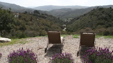 repousante : lavender, lounge chairs, and green valley below Stock Footage