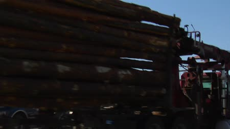 silvicultura : two log trucks pass each other on the road