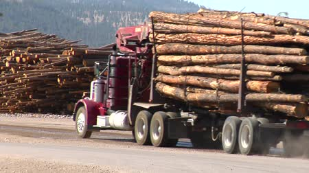 лесное хозяйство : log truck drives to lumber mill