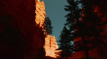 taş : view up from Canyon in Bryce Canyon national Park Stok Video