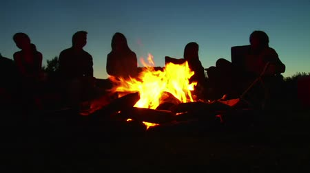 şenlik ateşi : silhouettes of people sitting around campfire