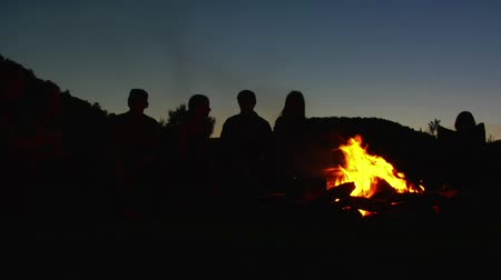 şenlik ateşi : group sits around campfire at dusk Stok Video