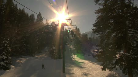 bezmotorové létání : Sunlight sparkles through trees, from chairlift