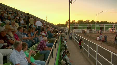 adil : crowd watches draft horse competition