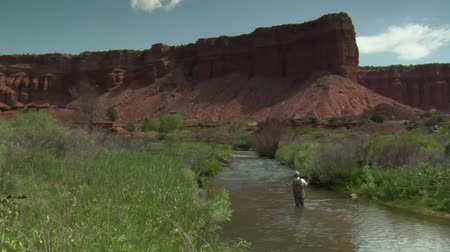 рыболовство : wide shot of fly fisherman and red rock cliffs