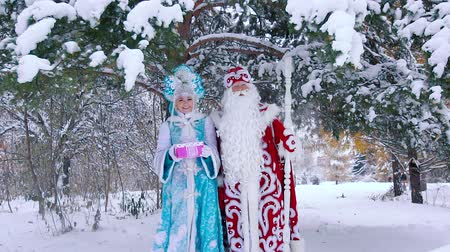 ded : Father Frost and Snow Maiden standing under snow-covered tree Stock Footage