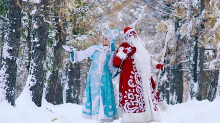 maiden : Glad Ded Moroz Father Frost and smiling SnegurochkaSnow Maiden walking in snowy forest