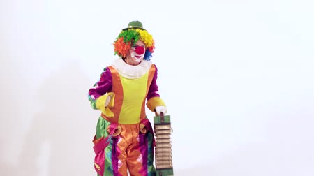 žolík : Circus clown dressed in funny colorful costume is enjoying her dance