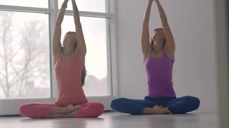 Two young smiling women practicing yoga together synchronously Filmati Stock