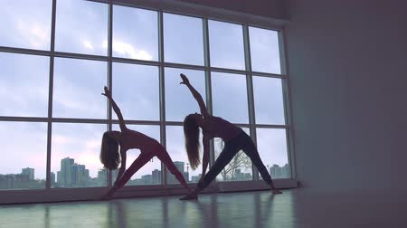 Two lovely yoga women doing yoga together in studio with large windows