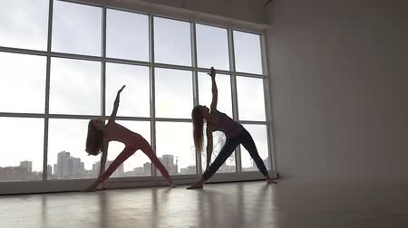ingressou : Two young fit women practicing yoga poses synchronously standing against window background