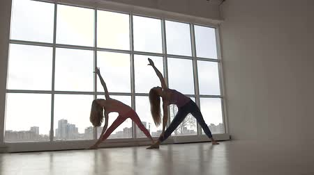 Two beautiful yoga women with perfect bodies exercising in yoga class together
