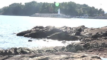 a sunlit sea & Lighthouse Stok Video