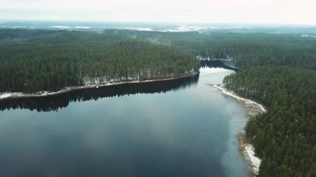 enviroment : Slow Drone Flying Over the Partly Frozen Lake Between Woods Full of Snow - Cold Winter Day, Mist Over Trees Stock Footage