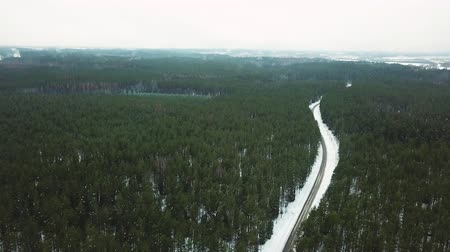 enviroment : Slow Drone Flying Overthe Snowy Road in the Middle of the Woods - Cold Winter Day, Mist Over Trees