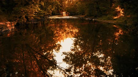 new jersey : This stock video features a view of a stream in autumn and the trees reflecting off the waters surface.