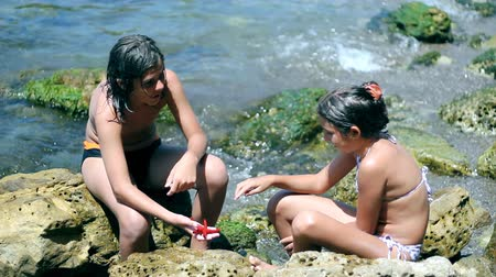 родной брат : Children at the sea shore looking at red sea star in their hands.Travel, vacation concepts.  Стоковые видеозаписи