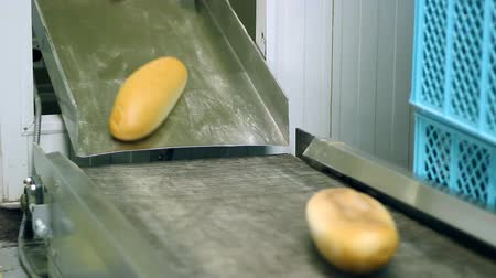 хлеб : Fresh baked bread coming out of the oven and moving along the conveyor belt. HD 1080i.