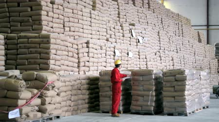 hurtownia : Worker checking sacks of sugar in a large warehouse. HD 1080i.