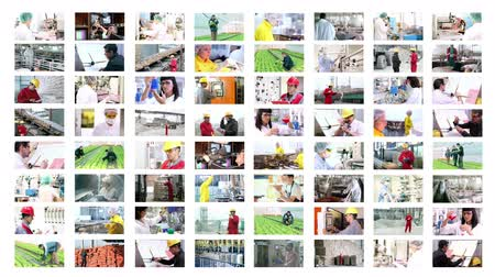 industry : Collage of video clips showing people of different professions at work.