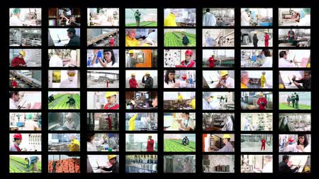 rolnik : Collage of video clips showing people of different professions at work.