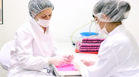 pharmaceuticals : Quality inspectors inspecting the quality of pills at a pharmaceutical plant. HD 1080p.