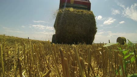 kırsal : Gathering Hay After the Harvest