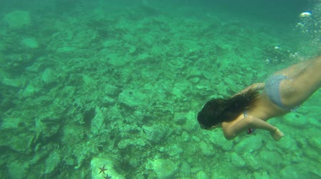 sualtı : Underwater shoot of a young lady skin diving for red star fish Stok Video