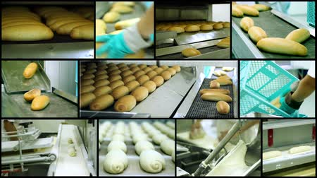 prepare food : Industrial Production Line for Bread Making Stock Footage