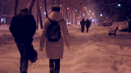 zmrazit : People walking on snowy streets at night.