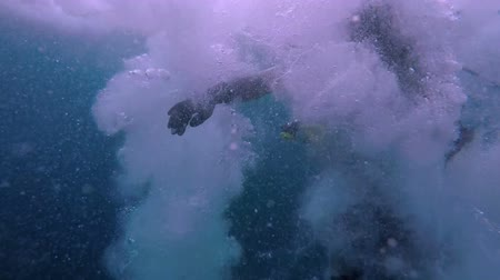 mergulhador : In slow motion a scuba diver jumps into water