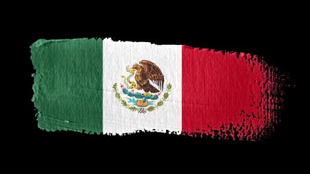 nádech : Mexico flag painted with a brush stroke