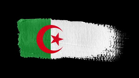 Algeria flag painted with a brush stroke Stok Video
