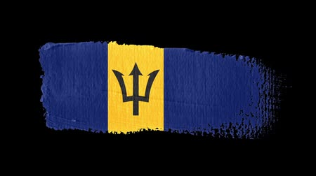 Barbados flag painted with a brush stroke Stok Video