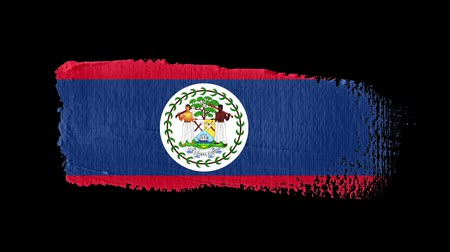 Belize flag painted with a brush stroke
