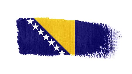 bosnia and herzegovina : Bosnia and Herzegovina flag painted with a brush stroke