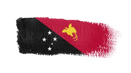 Papua New Guinea flag painted with a brush stroke