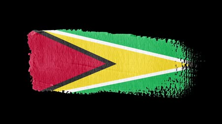 Guyana flag painted with a brush stroke Stok Video