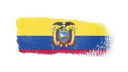 equador : Ecuador flag painted with a brush stroke Stock Footage