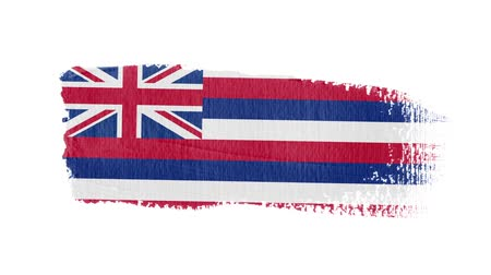 articles : Hawaii flag painted with a brush stroke